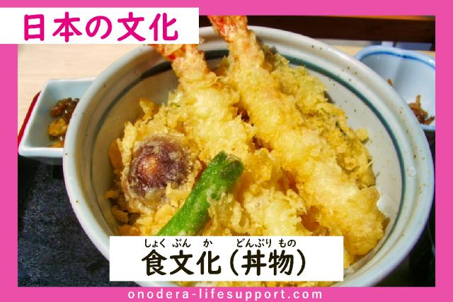 Food Culture ( Donburi or Rice Bowl Dish)